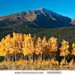Autumn Breckenridge