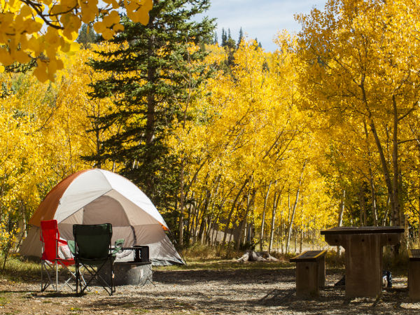 Best Places to View Aspens in Breckenridge