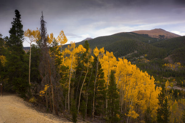 Best Places to View Fall Colors Breckenridge